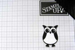 Dracula owl step 1