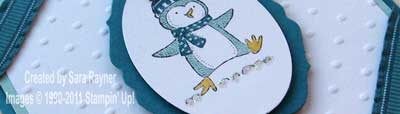 polar party penguin close up