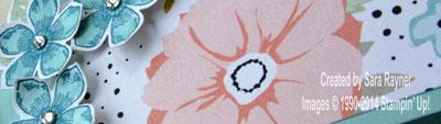 petite petals close up