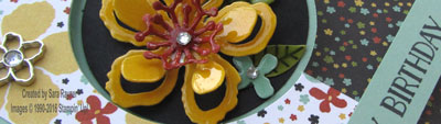 botanicals circle flip close up